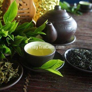 trà tân cương thái nguyên loại ngon hảo hạng giá rẻ